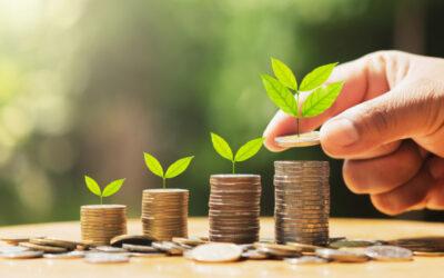 Oszczędności – w jaki sposób zgromadzić ich więcej w 2021?
